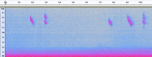 spectrogram_RE_B_