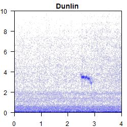 spectrogram_4s_DN