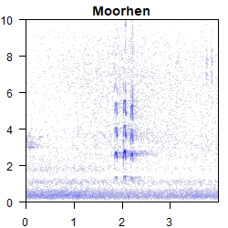 spectrogram_4s_MH