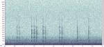 Moorhen kik sequence