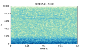 20200511-2330-CB4-Gillings-PS-XX-(zzz)