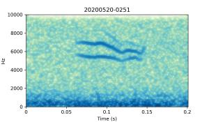 20200520-0251-CB4-Gillings-PS-SF B
