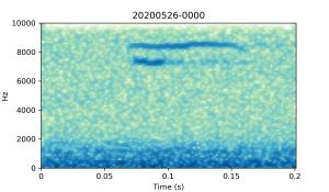 20200526-0000-CB4-Gillings-PS-XX-(zzz)